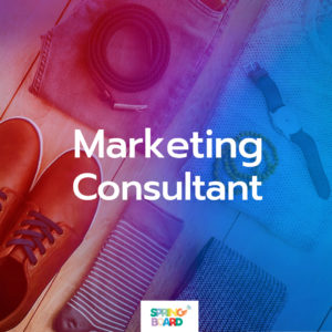 Marketing Consultant - The Social Media Package by Springboard Solutions